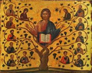 Reflections for Sunday, October 4, 2020