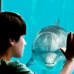 Dolphin Tale and Rethinking Dominion