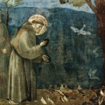 "St. Francis: Creation and ""The Environment"""