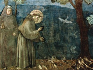 """St. Francis: Creation and """"The Environment"""""""