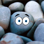 Pet Rock small