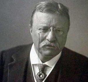 teddy roosevelt presidency essay The rising young republican politician theodore roosevelt unexpectedly became the 26th president of the united states in september 1901, after the assassination of.