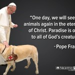 NO! Pope Francis did NOT say that!