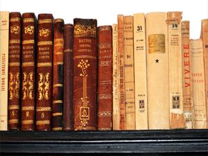 bookshelf books library reading book tomes