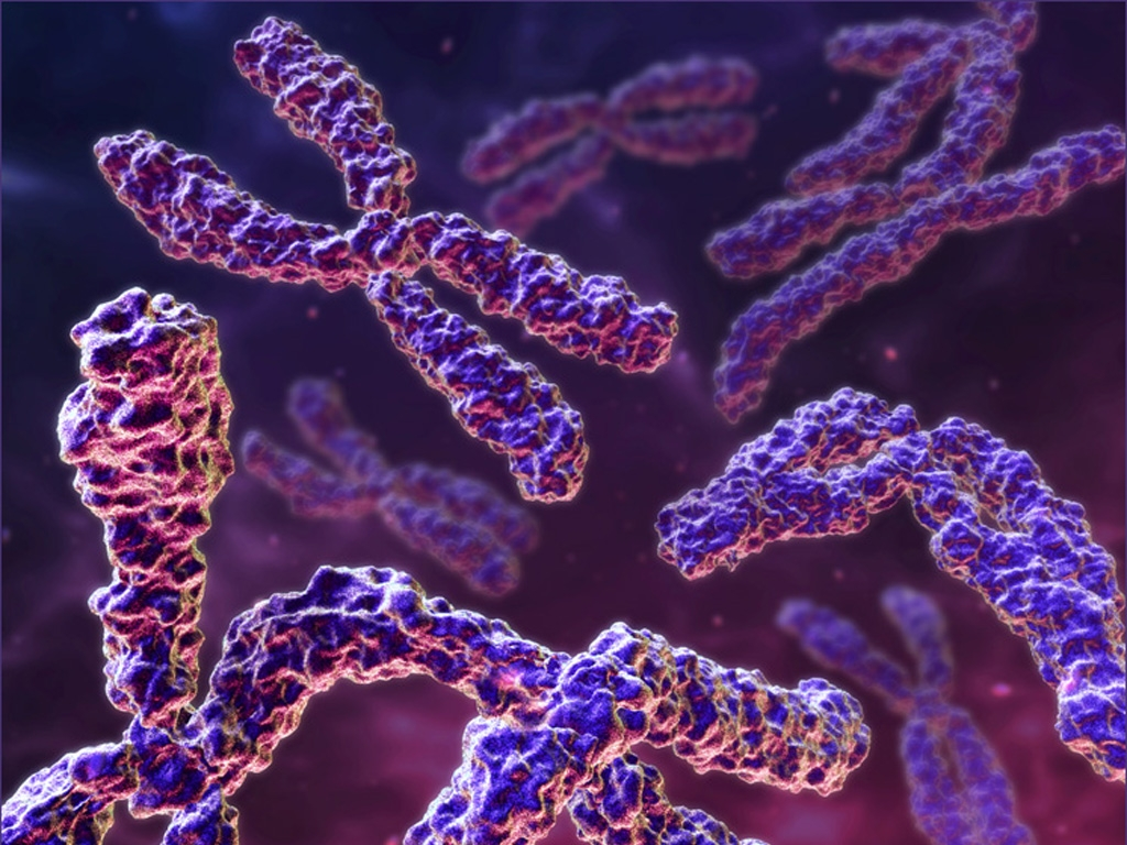 a history of cloning in the field of genetic research Ohsu institutional review board genetic research  are involved in genetic research, or research using genetic samples or information  family history or a.