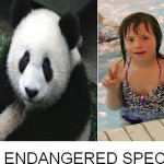 Save the Pandas <em>and</em> Down Syndrome