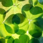 Irish Prayers for Strong Families and Spiritual Protection