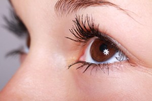 woman's brown eyes